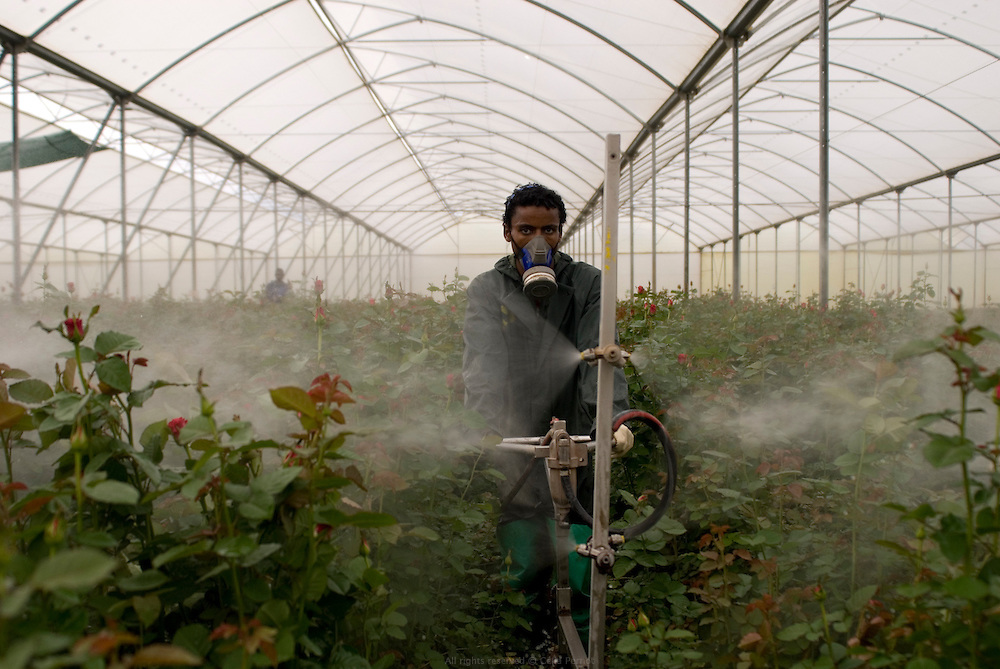 pollution horticulture Horticulturists are frequently concerned with pollution, the author informs us, since many horticultural activities are associated with urban areas and because the intensive nature of.