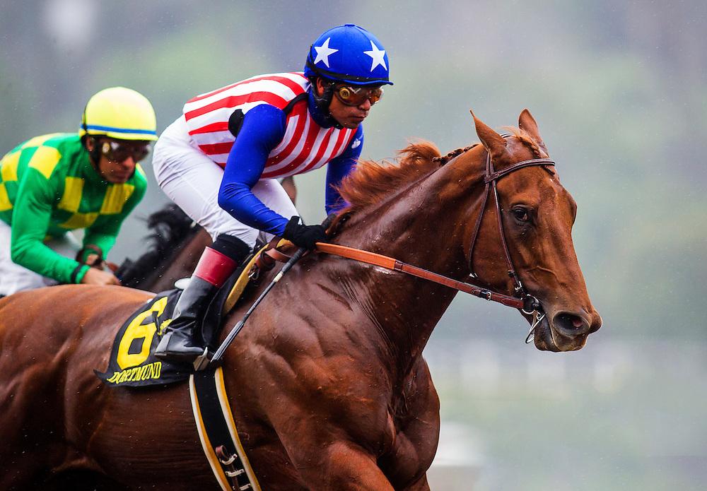 February 07 2015: Dortmund with jockey Martin Garcia up wins The GII Robert Lewis Stakes at Santa Anita Park in Arcadia CA. Alex Evers/ESW/CSM`