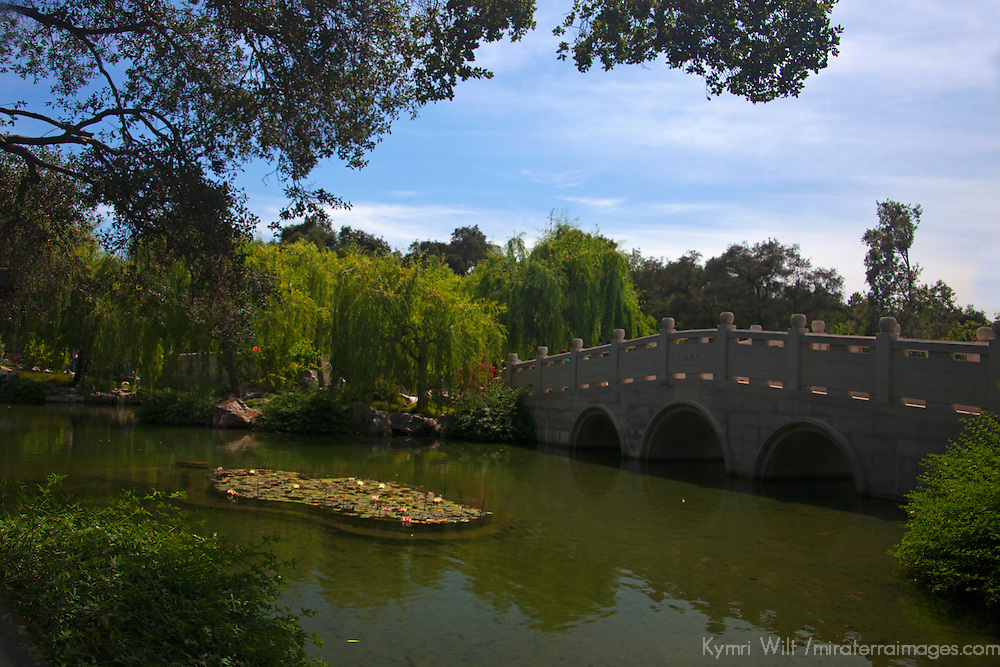 USA, California, San Marino. The Huntington Library Chinese Gardens Pond.