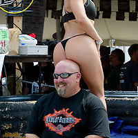 """""""Angie"""" sits on the head of Judd Maxwell at a Harley-Davidson anniversary party in Milwaukee August 29, 2003. The legendary American motorcycle company is celebrating its 100th anniversary and is expected to draw 200,000 to 300,000 people to the company's home base over four days.    REUTERS/Rick Wilking"""