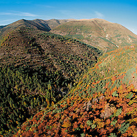Aerial view of the autom fall foliage on the Pyrenees