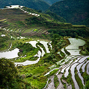 PHILIPPINES (Hungduan, Province of Ifugao). 2009. Rice terraces near Hungduan village.