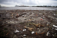 Trash washed up along the coast after the rainstorm in Long Beach, Calif. on Saturday, March 1, 2014. (AP Photo/Ringo H.W. Chiu)