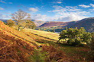 A field down to distant Ullswater, Cumbria - photographed in October.