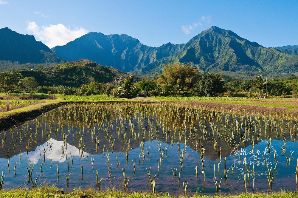 Hanalei Mountains