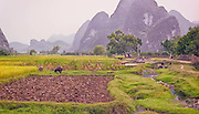 Ploughed field, Guangxi Provence, China, detail extractor effect