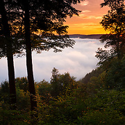 Thick fog covers the valley surrounding the Allegheny River in the Allegheny National Forest near Tidioute, Pennsylvania. Radiation fog is common in river valleys, especially in the late summer and autumn, when cold air sinks into moist air.