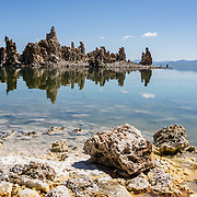 An intriguing island of tufa towers reflect in alkaline waters at South Tufa Area, in Mono Lake Tufa State Natural Reserve, Lee Vining, California, USA. The Reserve protects wetlands that support millions of birds, and preserves Mono Lake's distinctive tufa towers -- calcium-carbonate spires and knobs formed by interaction of freshwater springs and alkaline lake water. Mono Lake has no outlet and is one of the oldest lakes in North America. Over the past million years, salts and minerals have washed into the lake from Eastern Sierra streams and evaporation has made the water 2.5 times saltier than the ocean. This desert lake has an unusually productive ecosystem based on brine shrimp, and provides critical nesting habitat for two million annual migratory birds that feed on the shrimp and blackflies. Since 1941, diversion of lake water tributary streams by the city of Los Angeles lowered the lake level, which imperiled the migratory birds. In response, the Mono Lake Committee won a legal battle that forced Los Angeles to partially restore the lake level.