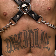 "Tattoo ""Discipline"" on abdomen with S&M skull paraphernalia and leather @ Folsom Street S&M street fair"