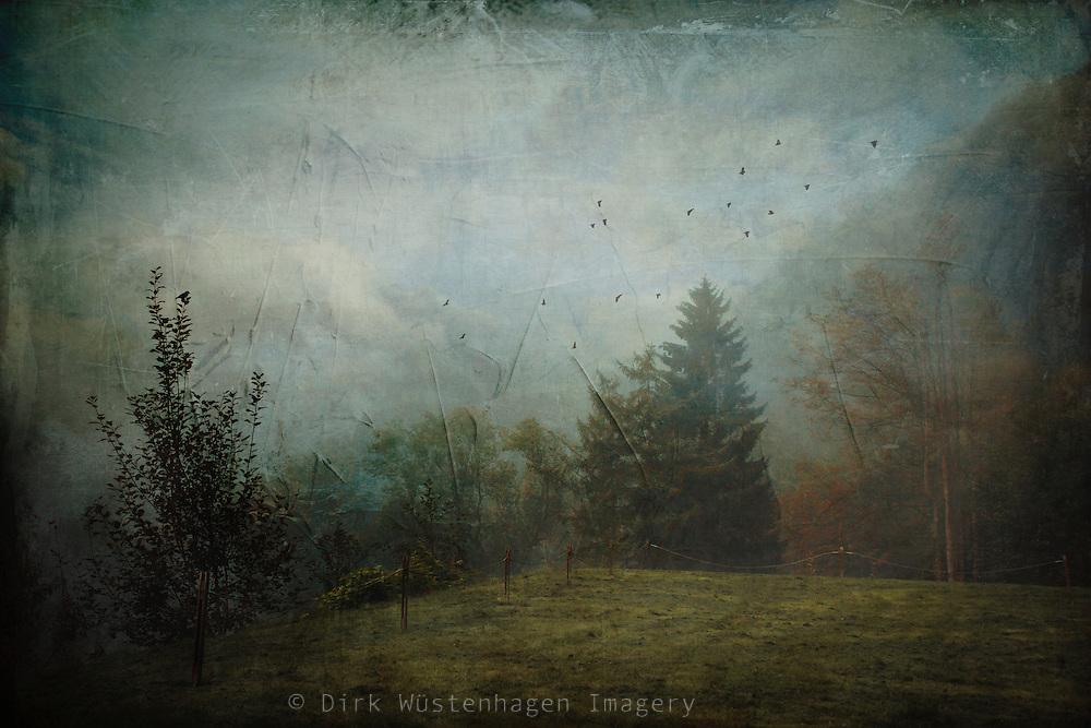 Misty September morning near Müngstener Brücke, Germany - texturized photograph