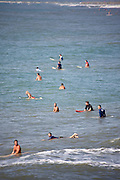 Large groups of surfers takes advantage of the ocean swell generated by a passing hurricane along the South Carolina coast in Folly Beach, SC