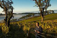 Maysara vineyard, McMinville AVA, Willamette Valley, Oregon