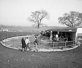 1974 - Slurry Disposal In Fermoy.  (G51)
