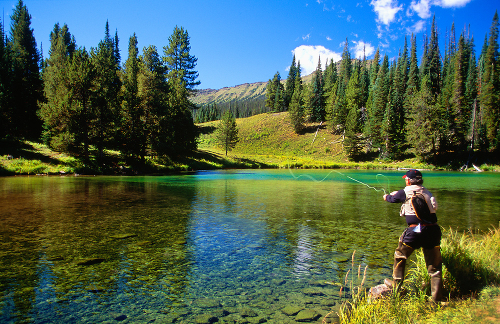 Fly fishing on the north fork near trappers lake flat for Best trout fishing in colorado