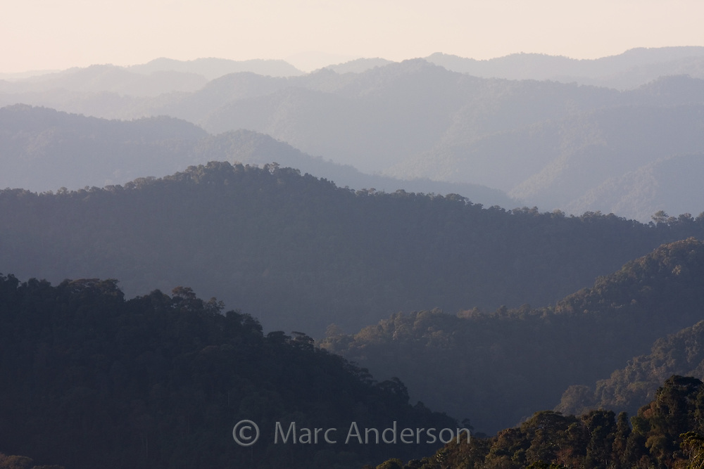 Rainforest covered hills in Kaeng Krachan National Park, Thailand