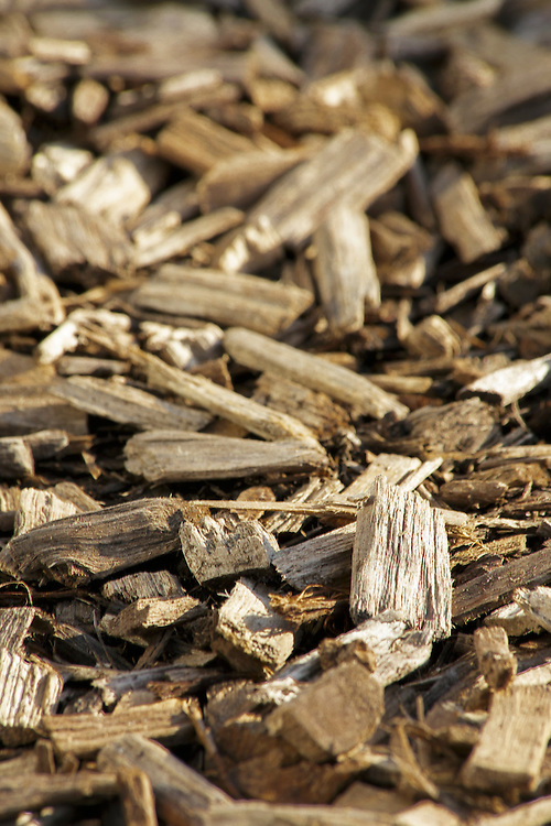 Close up of Wood Chip