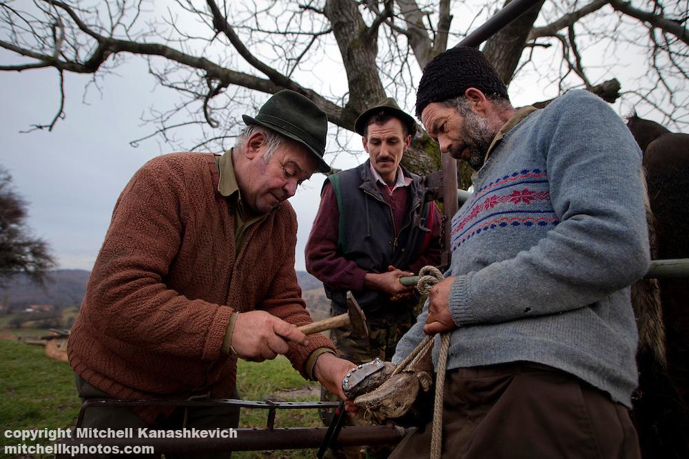 Rural Romanian men putting new