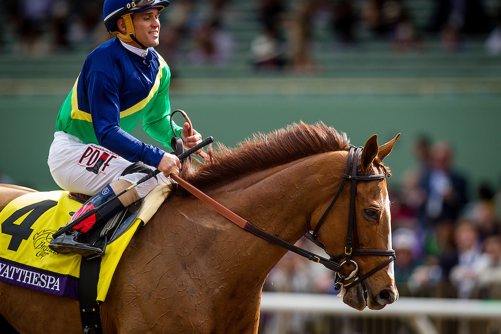 November 01 2014: Dayatthespa, ridden by Javier Castellano and trained by Chad Brown, wins the Breeders' Cup Filly & Mare Turf (G1) at Santa Anita Park in Arcadia, California on November 1, 2014. Alex Evers/ESW/CSM