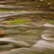 Photograph by Leandra Lewis of water flowing around algae covered rock at Alley Spring, Ozark National Scenic Waterways, Missouri.