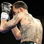 Lightweight boxing pro Joltin Joey Tiberi of Wilmington Delaware in action during champs at the chase Friday, Nov 21, 2014 at The Case Center on The River Front in Wilmington, Del.