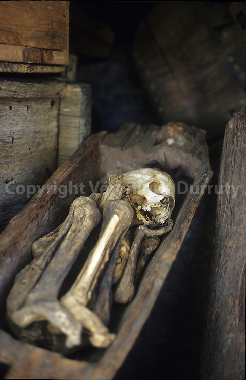 A Kabayan, la commune abritant le complexes funeraire de Timbac, un bucheron decouvrit la premiere grotte par hasard en 1972.  In Kabayan, the first funerary complex with Ibaloi mummies was discovered by a lumberjack in 1972.