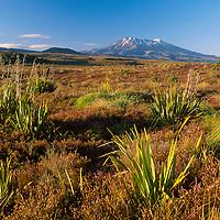 Mt Ruapehu Tongariro NP