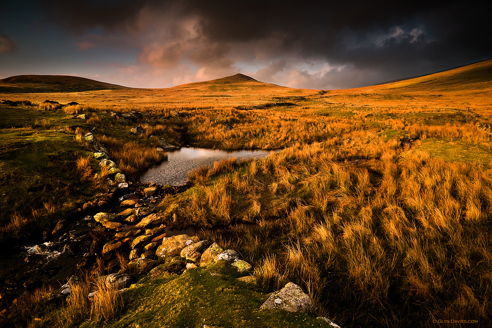 Evening sunlight over 'Gyrn' and Moel Wnion in the lower Carneddau mountains.