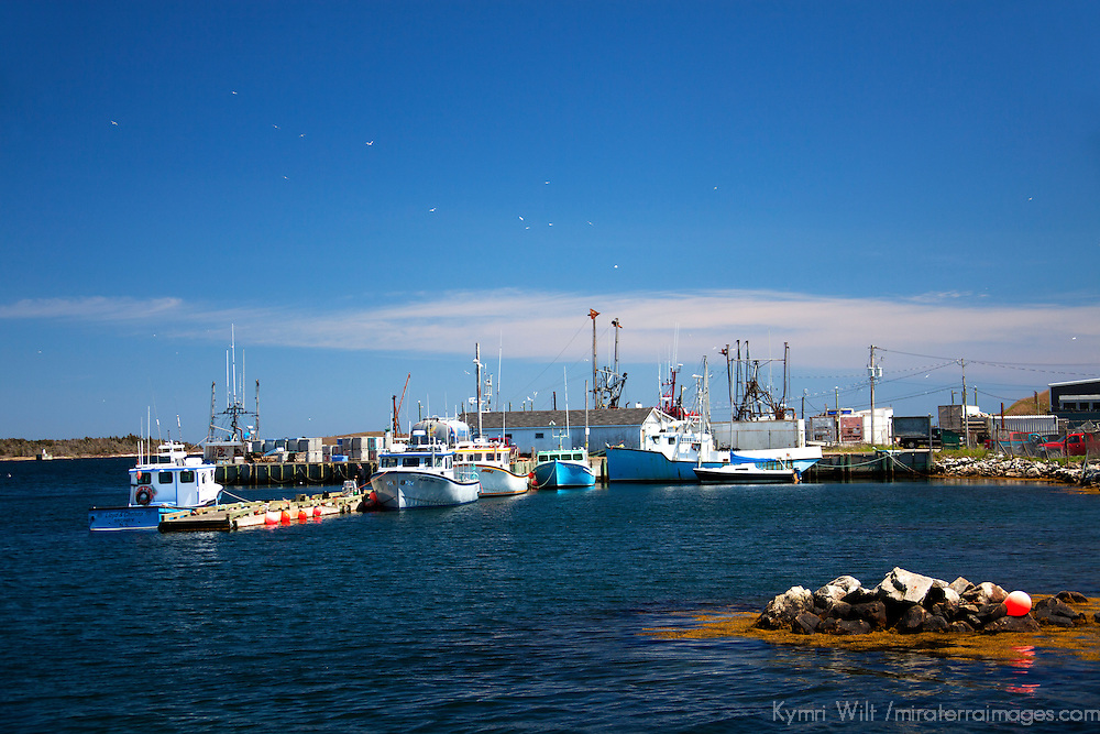 North America, Canada, Nova Scotia, Canso. Fishing boats and dock of Canso harbour.