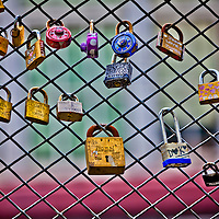 WA09575-00...WASHINGTON - Locks on fence in Seattle.