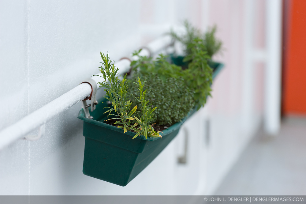 A planter of herbs hangs outside the kitchen window on the Alaska Marine Highway System ferry, m/v LeConte. The LeConte, like many of the ships in the Alaska Marine Highway fleet, offers hot and cold food and beverage service including Alaska seafood, salads, and sandwiches. Food service on the LeConte is served cafeteria style.
