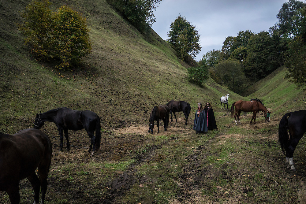 Horses graze after being used for a fighting demonstration during a medieval festival on Saturday, September 24, 2016 in Mstislavl, Belarus.