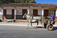 Horse and cart in Sumidero, Pinar del Rio, Cuba.