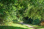 Old Croton Aqueduct Trail, Irvington, NY,