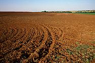 Plowed field, western Oklahoma