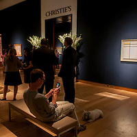 Visitor at Christie's King street exhibition photographing his dog.
