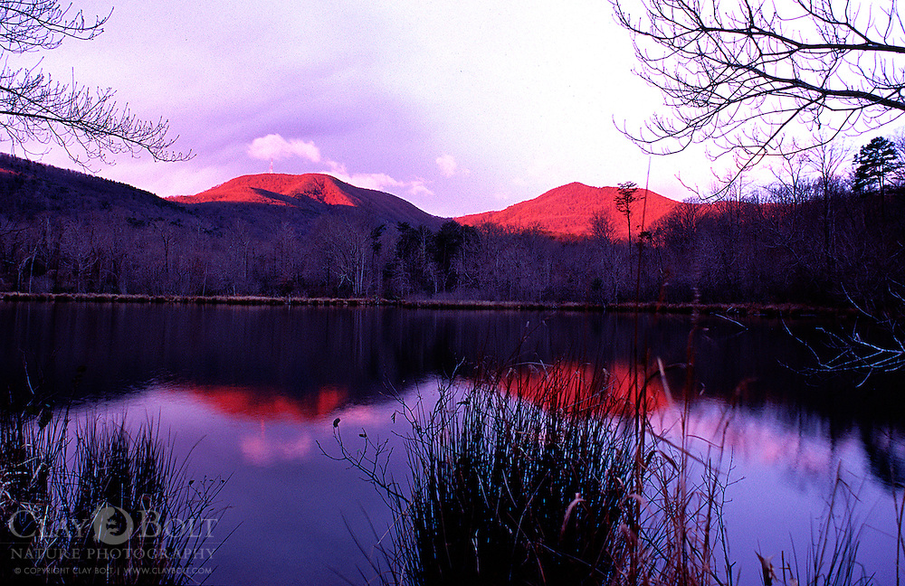 Magenta sunrise over Beaver Pond, Blue Wall Preserve, Landrum, South Carolina, USA. This is a Nature Conservancy Preserve on the North Carolina and South Carolina Border. Hogback mountain is in the distance.
