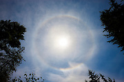 A 22° halo forms around the sun over Snohomish County, Washington. The 22° solar halo forms when the sun shines into thin, ice-filled cirrus clouds. The hexagonal ice crystals serve as tiny prisms to create the full-circle rainbow around the sun.