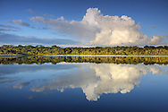 Anangurocha Lake, Lagoon, at Napo Wildlife Center, Rainforest, Amazonia, Ecuador