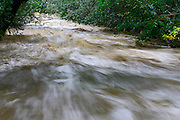 BOULDER, CO - SEPTEMBER 13: The waters of Boulder Creek were running at historic levels as heavy rains for the better part of week fueled widespread flooding in Boulder, Colorado on September 13, 2013. (Photo by Marc Piscotty/ © 2013)