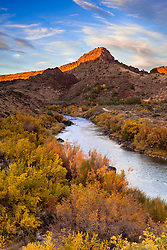 Fall color along the Rio Grande. Orilla Verde Recreation Area near Pilar, New Mexico.
