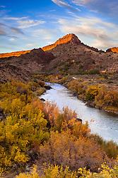 Fall color along the Rio Grande. Orilla Verde Recreation Area near Pilar, New Mexico.