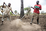Moubarak Abu Sabah, seen here leveling the land with his employee George Latuko, is from Sudan. He has lived in South Sudan for the past 18 years. He met his wife in 1979 and they lived with their two children in Khartoum until they decided to move initially to Nassir in South Sudan. In 2014, he was given a grant by Adventist<br /> <br /> Development and Relief Agency (ADRA) to cultivate land in Rejaf East, near the capital, Juba. The land has been cleared of landmines by the Mines Advisory Group (MAG) and other mine action partners, making it safe to farm, so he moved there to cultivate crops with four other farmers. This area is fertile ground, allowing them to grow crops like tomatoes, cucumber, watermelon, okra, black pepper, chili, carrot and cabbage. The vegetables are all sold in Juba markets. Moubarak also rents land to another local farmer. He thinks that in the future they may need to get better quality seed, pesticides and vitamins for the vegetables. Meanwhile, he is very happy to see that it is no longer dangerous to use the land now that it has been cleared of landmines.<br /> <br /> A neighbour, Hendrick Barea, recalled that in 2000, he was so desperate to farm his land in order to feed himself that he used his machete to remove what he believes may have been explosive hazards. He was very happy to see UNMAS teams conducting clearance of landmines and unexploded ordnance in this area in 2014.<br /> <br /> Photo: UNMAS/ Martine Perret