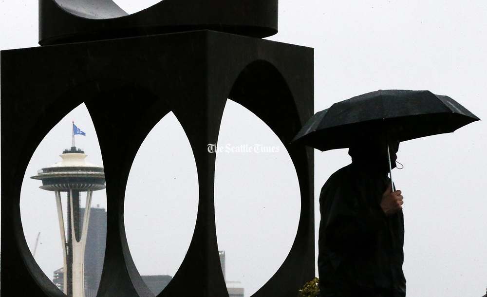 "The umbrellas are back out in Seattle, as a man passes ""Changing Form,"" the Kerry Park sculpture by Doris Chase. (Ken Lambert / The Seattle Times)"