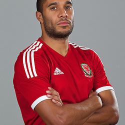 Wales 2013-14 Headshots Adidas