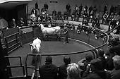 Norwich Livestock Market