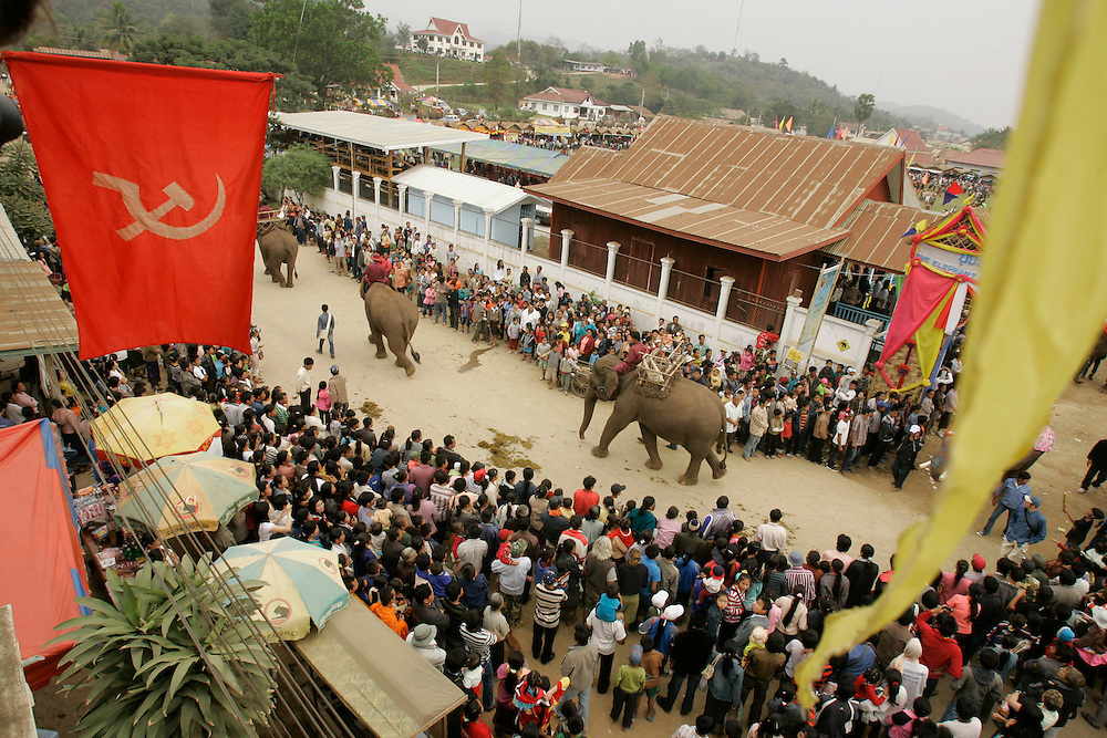 Asian Elephants parade during ceremonies at the second annual Elephant Festival in Paklay, Laos, Thursday, Feb. 14, 2008.