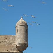 Essaouira / Mogador