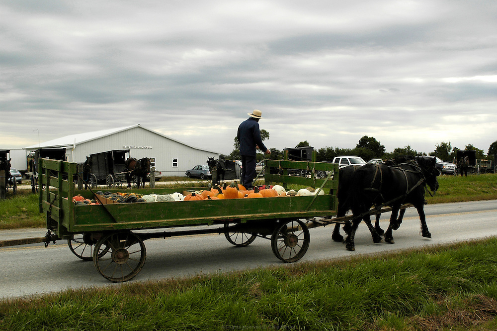 Vente aux ench&egrave;res des r&eacute;coltes Amish organis&eacute;e deux fois par semaine par William Borntrager, l'un des fermiers Amish les plus influent du cont&eacute; de Clark, Missouri. Cette vente est le second moyen de distribution des produits Amish apr&egrave;s la vente directe &agrave; la ferme. Les principaux clients sont de petits commer&ccedil;ants locaux.<br />