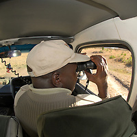 Local guide looking through the binoculars and  exploring the Masai Mara National Park on a four wheeler vehicle