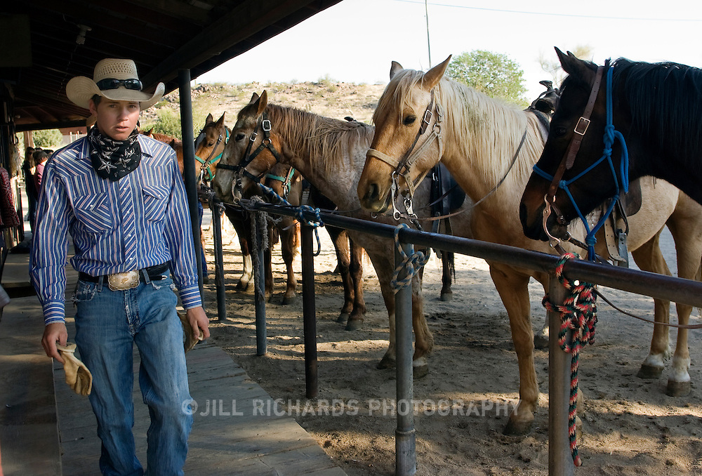 A young cowboy prepares horses for a ride through South Mountain Park and Preserve. Tourist can spend the day horseback riding with horses from Ponderosa Stables, located at South Mountain in Phoenix, Arizona